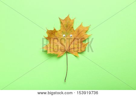 Autumn Leaf With Googly Eyes On Green Background