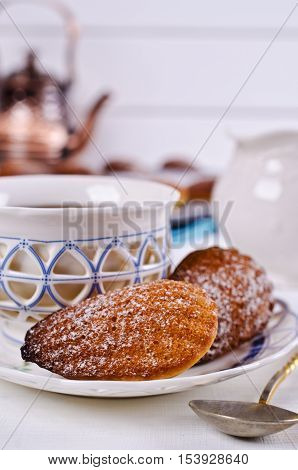 Homemade biscuits madeleines with powdered sugar on a light background. Selective focus.