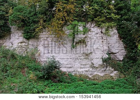 Close up of the chalk face of an old quarry in the UK