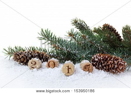 Bottle cork pine and cones isolated on a white background