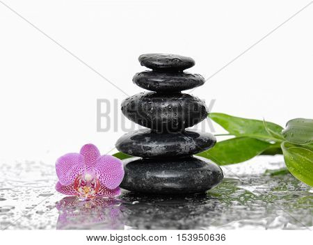 Still life with zen stones and pink orchid ,bamboo leaf