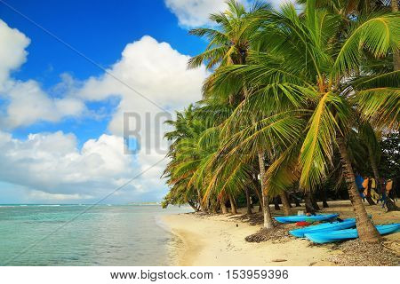 View of the Beautiful beach in Guadeloupe, Caribbean Islands
