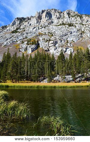Alpine Lake surrounded be a meadow and Pine Forest with a mountain peak beyond taken in the Sierra Nevada Mountains, CA