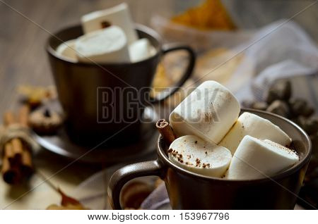 Cup of of hot chocolate, coffee with marshmallow, cinnamon, fir branch on rustic wooden background with dry leaves. Natural winter style decorations. Natural cozy vintage border background