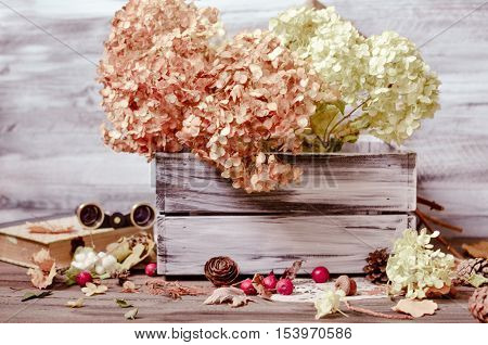 Vintage decorative composition with dry flowers of hydrangea in wooden box on a rustic wooden background, pine  cones, old book, binoculars. Selective focus, toned