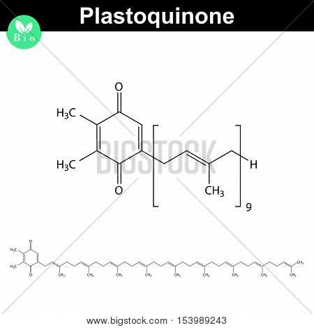 Plastoquinone - photosynthesis electron transport chain part 2d vector illustration isolated on white background eps 8