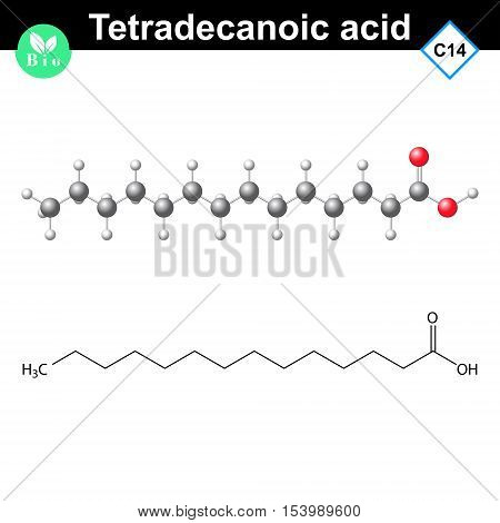 Tetradecanoic acid molecule myristic acid chemical structure 2d and 3d vector illustration isolated on white background eps 8