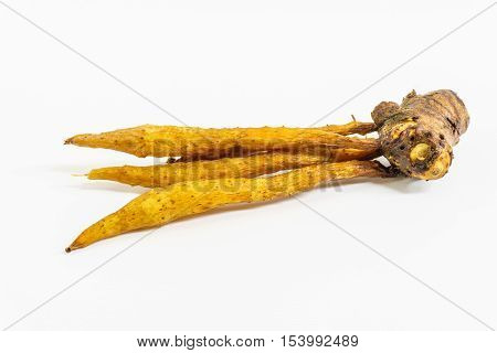 finger root on white background,rhizome,herb in thailand,food thai style.