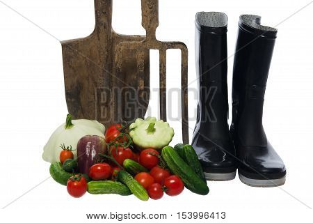 shovel with a pitchfork stands next to a basket of vegetables