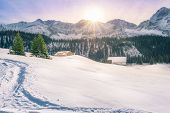 Winter in Austrian mountain village - Picturesque winter scenery on a sunny December day in Ehrwald Austria with the sun warming up the peaks of the Alps mountains covered in snow and fir trees. poster