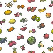 Vector illustration colored seamless pattern of a big set of juicy ripe fruit. Isolated white background. Hand-drawn sketch fruity. Vintage retro style. Wallpaper for restaurant cafe eateries kitchen. poster