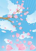 Cherry blossom branch. Vector. poster