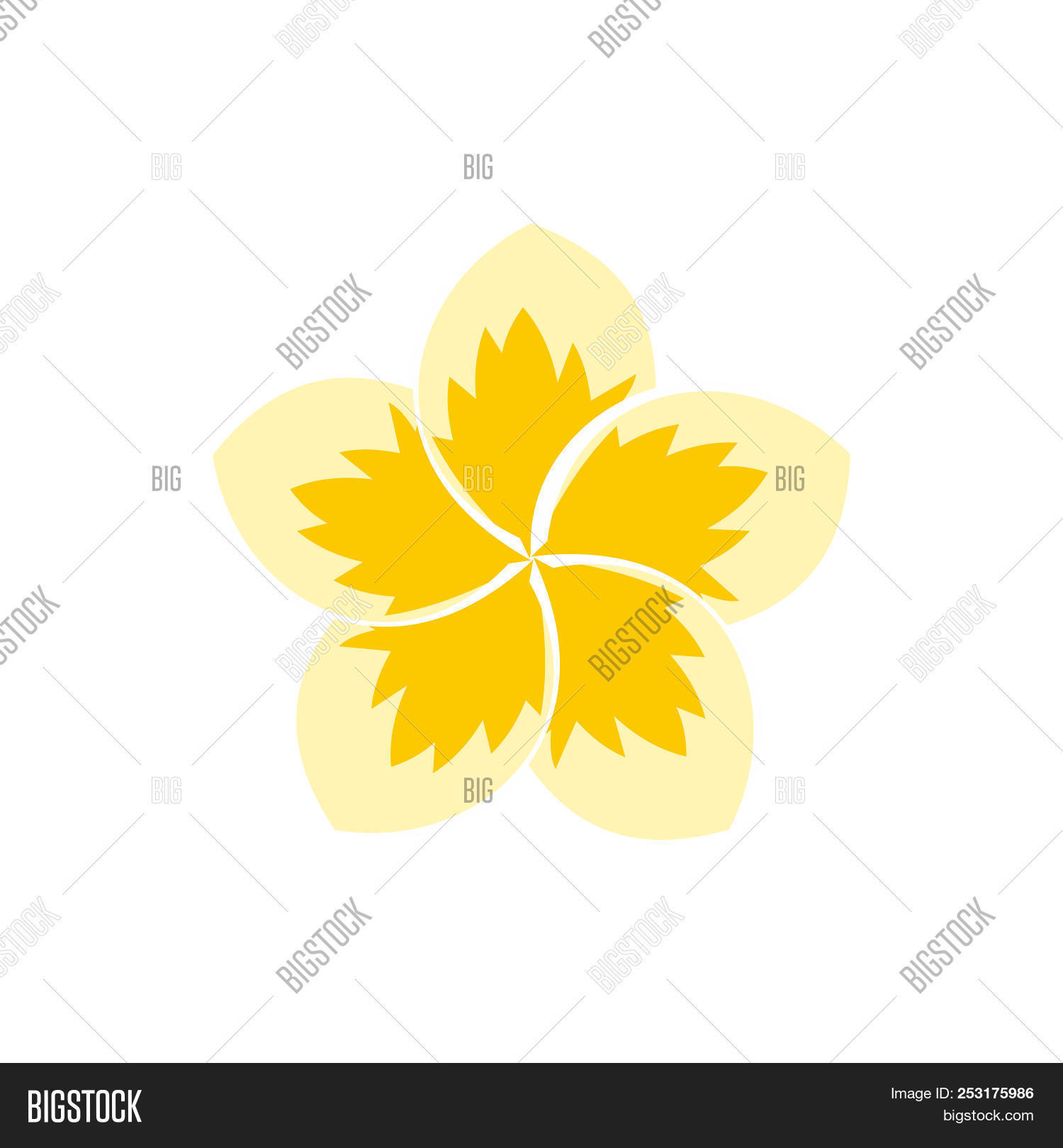 Frangipani Flower Icon Image Photo Free Trial Bigstock