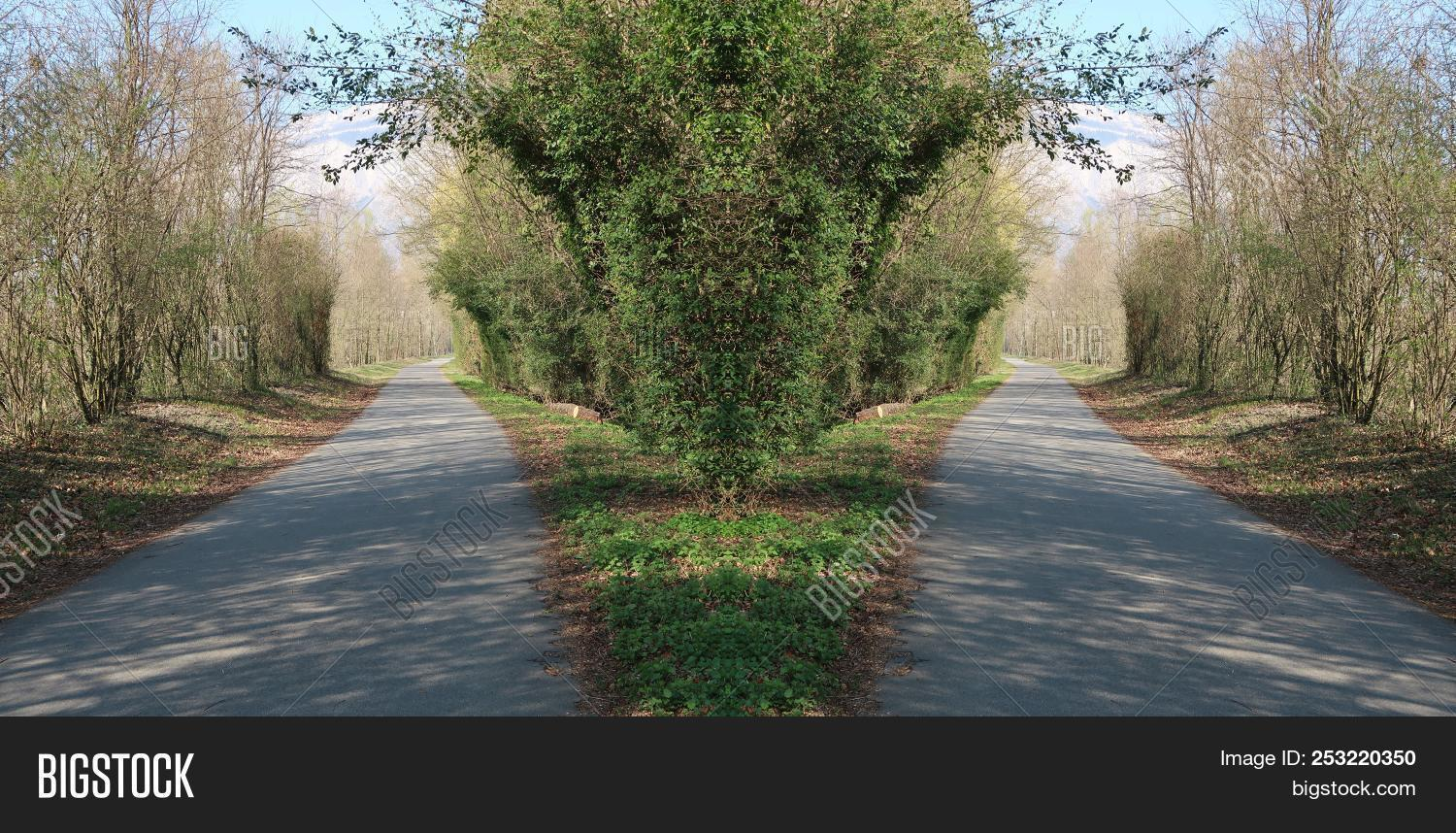 What If Two Roads Are Illusion What If >> Optical Illusion Two Image Photo Free Trial Bigstock