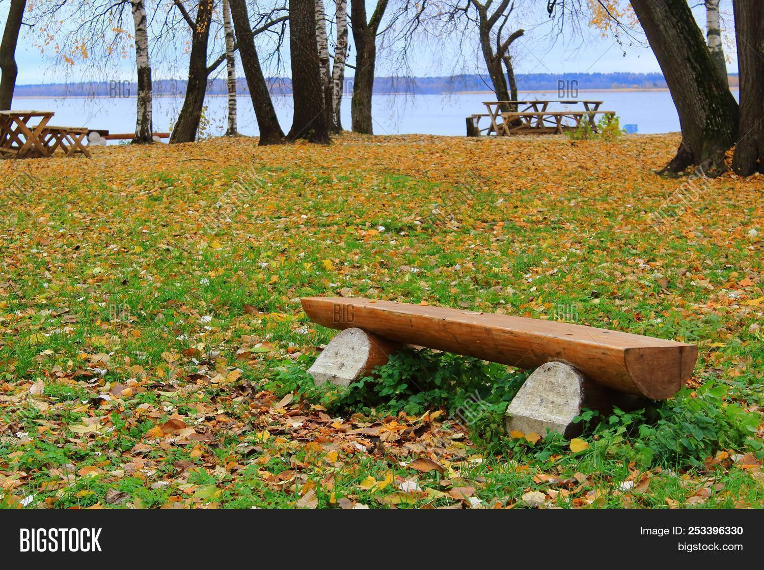 Wooden Bench Autumn Image Photo Free Trial Bigstock
