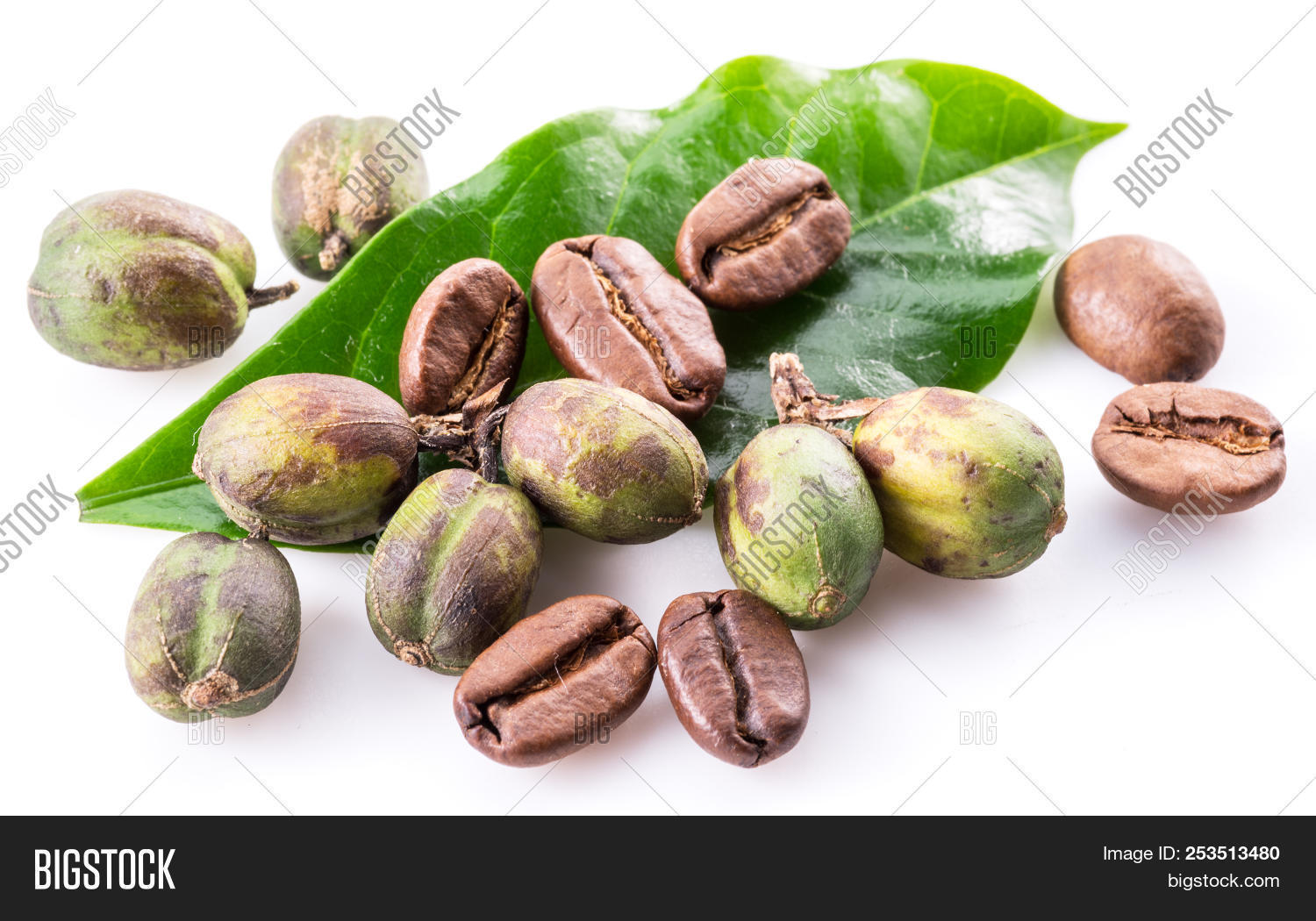 Green Coffee Beans Image Photo Free Trial Bigstock White Roasted And Fresh Leaves On Background Macro