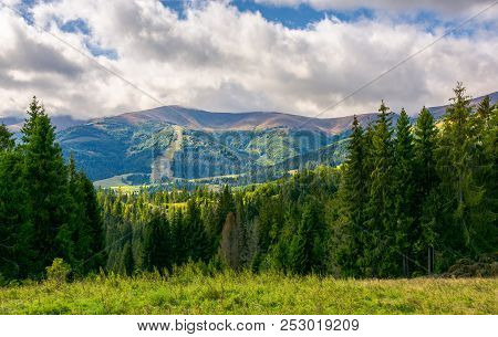 Beautiful Landscape With Forested Hills. Autumn Landscape In Wonderful Sunny Weather And Low Clouds