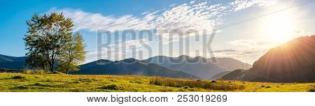 Panorama Of A Mountainous Landscape. Trees On The Grassy Meadow. Powerline Tower In The Distance. Be