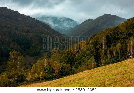 Forested Mountains In Autumn. Cloudy And Foggy Weather. Creative Moody Toning
