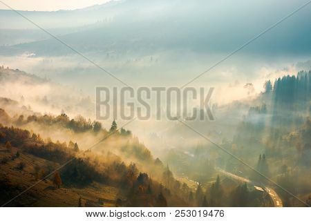 Fog Rise Above The Forest On Hill. Beautiful Autumn Scenery In Mountain At Sunrise