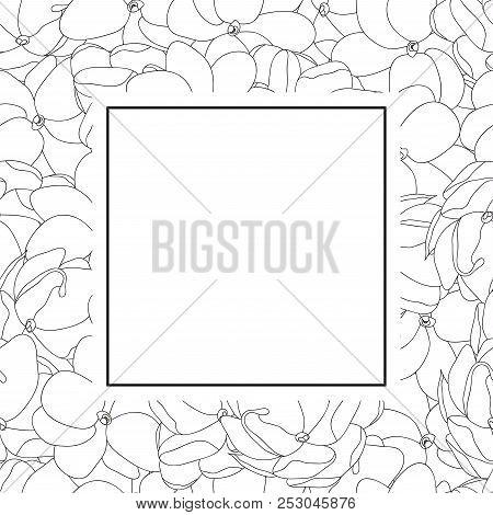 Jasminum Sambac - Arabian Jasmine Outline Banner Card. Vector Illustration.
