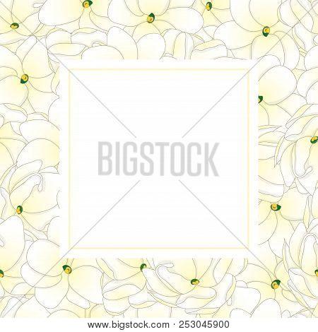Jasminum Sambac - Arabian Jasmine Banner Card Border. Vector Illustration.