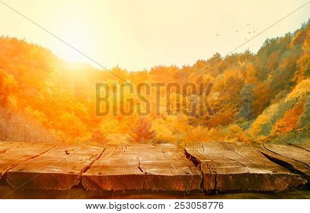 Autumn Background Nature. Tabletop With Falling Leaves. Autumn Table With Forest. Table In Nature