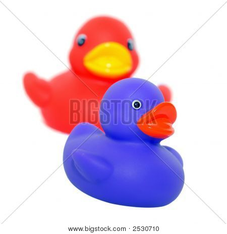 Two Rubber Duckies