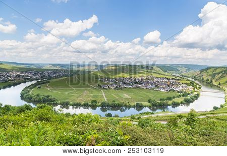 Moselle Loop At Trittenheim Panorama Germany Picture Panorama