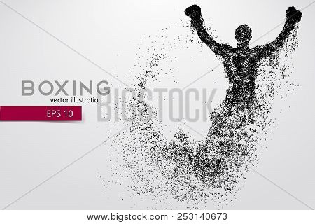 Boxing Silhouette. Background And Text On A Separate Layer, Color Can Be Changed In One Click. Boxin