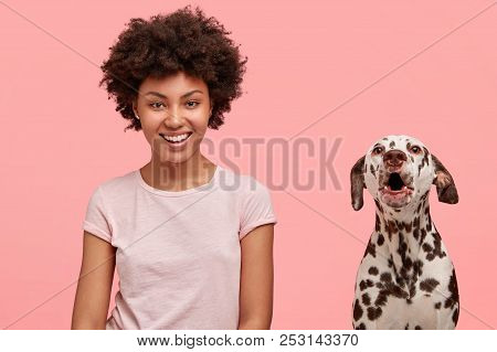 Cheerful African American Female Being In Love With Her Dalmatian Dog, Pose Together After Outside S