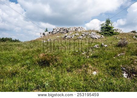 Skalky Hill With Mountain Meadow, Few Small Trees And Small Rocks In Lucanska Mala Fatra Mountains I