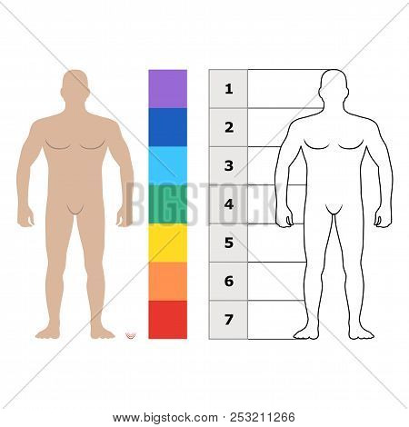 Fashion Man Body Full Length Bald Template Figure Silhouette Front View, Vector Illustration Isolate