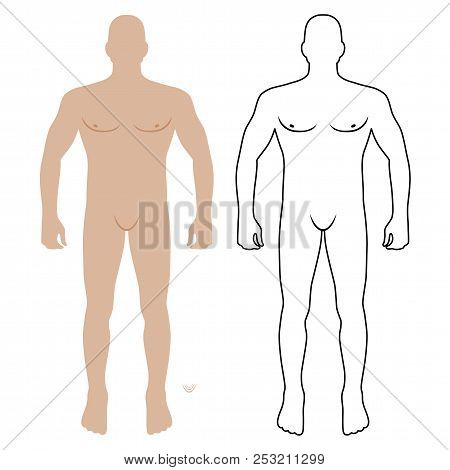 Fashion Man Body Full Length Front View Bald Template Figure, Vector Illustration Isolated On White