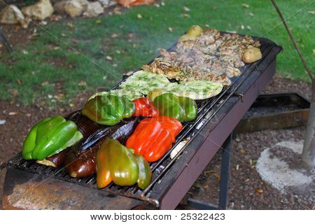 Barbecue meat sticks ang vegetables on mangal
