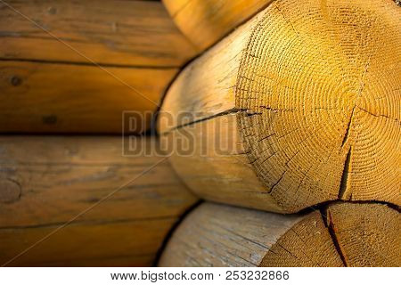 Round Wooden Logs Blockhouse Closeup Background With Sun Reflections