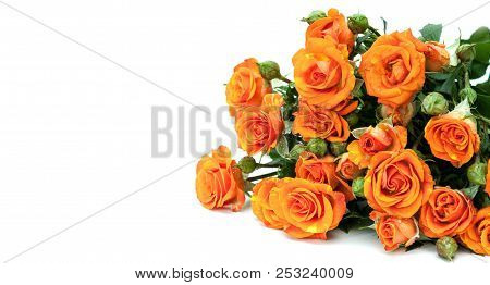 Bouquet Of Red Roses On White.