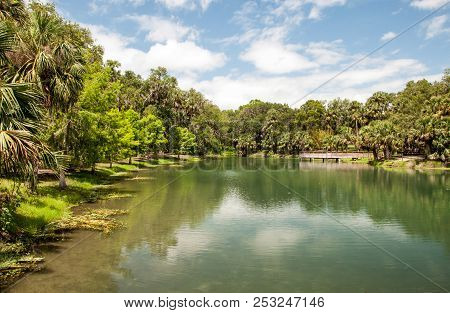 Gemini Springs Park In Florida During Spring.
