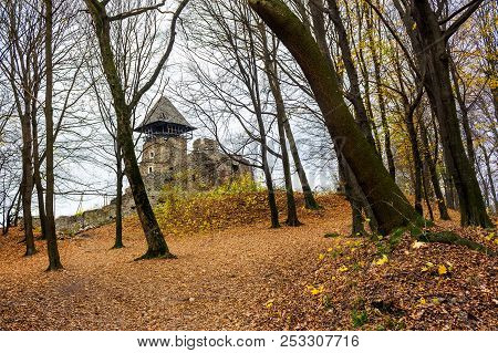 Medieval Fortress In Autumn Leafless Forest. Nevytsky Castle Is Popular Tourist Destination Of Trans