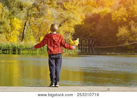 Boy In Red Jacket Standing On The Dock. Leaves In Hand. Autumn, Sunny. Back View