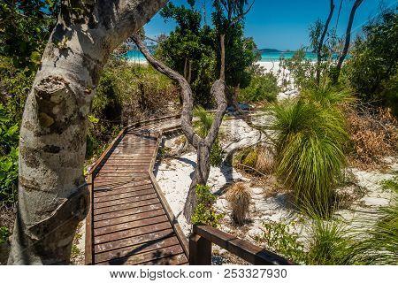 Wooden Boardwalk In Whitehaven Beach In Australia