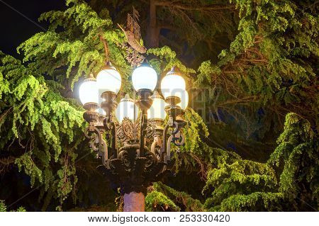 Luminous Wrought Ornate Street Light On The Background Of Needles Of Pine Tree At Night