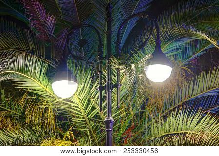 Luminous Wrought Ornate Street Light On The Background Of Leaves Of A Palm Tree At Night