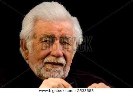 Wise Elder