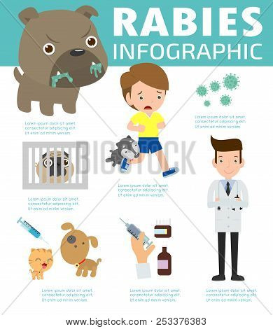 Rabies Infographic, Illustration Of Rabies Describing Symptoms And Medications Or Vaccine. Cartoon I