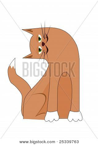 Cartoon cat with tilted head