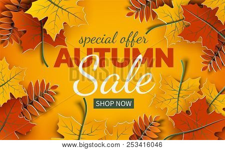 Autumn 3d Sale Banner, Paper Colorful Tree Leaves On Yellow Background. Autumnal Design For Fall Sea