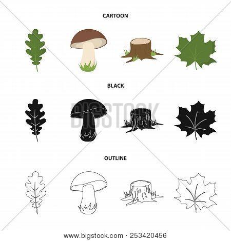Oak Leaf, Mushroom, Stump, Maple Leaf.forest Set Collection Icons In Cartoon, Black, Outline Style V