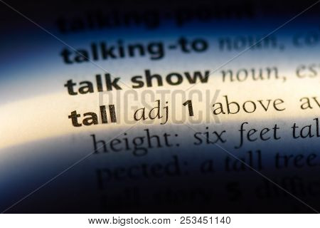 Tall Word In A Dictionary. Tall Concept.