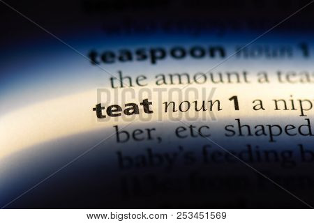 Teat Word In A Dictionary. Teat Concept.